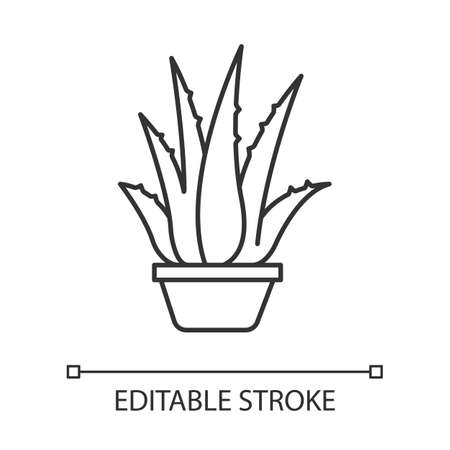 Houseplant pixel perfect linear icon. Potted aloe vera. Cactus sprouts and succulent leaves. Thin line customizable illustration. Contour symbol. Vector isolated outline drawing. Editable stroke