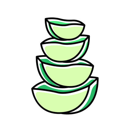 Aloe vera slices green color icon. Cut cactus pieces. Plant ingredient for cosmetic. Medicinal herbs. Dermatology and skincare. Vegan products. Botany, greenery. Isolated vector illustration
