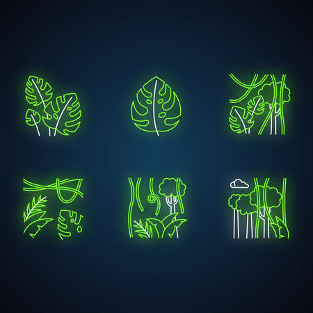 Rainforest plants neon light icons set. Evergreen forest vines. Swiss cheese plant. Trip to Indonesian jungle. Bali nature. Exploring tropical flora. Glowing signs. Vector isolated illustrations