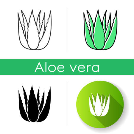 Succulent sprouts icon. Growing aloe vera. Cactus leafs and medicinal herb. Decorative plant. Ingredient for vegan cosmetic. Linear black and RGB color styles. Isolated vector illustrations Illusztráció