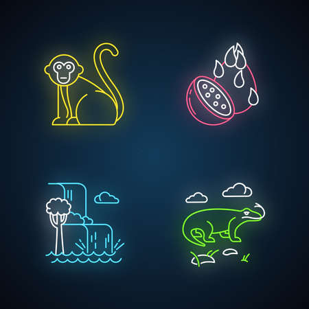 Indonesia neon light icons set. Tropical country animals. Trip to Indonesia. Explore exotic wildlife. Unique fruits and plants. Nature wonders, waterfalls. Glowing signs. Vector isolated illustrations