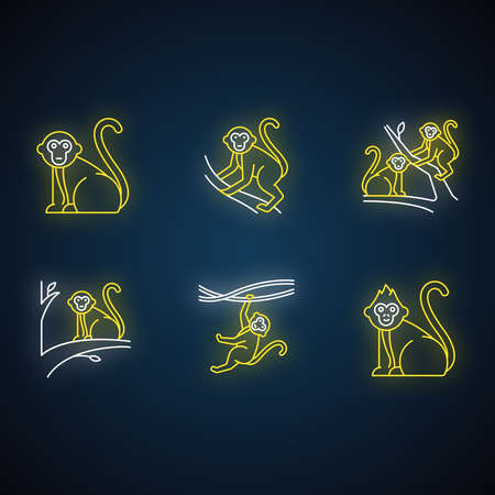 Monkeys in wild neon light icons set. Tropical country animals on trees. Exploring exotic Indonesian wildlife. Primate sitting. Balinese forest fauna. Glowing signs. Vector isolated illustrations