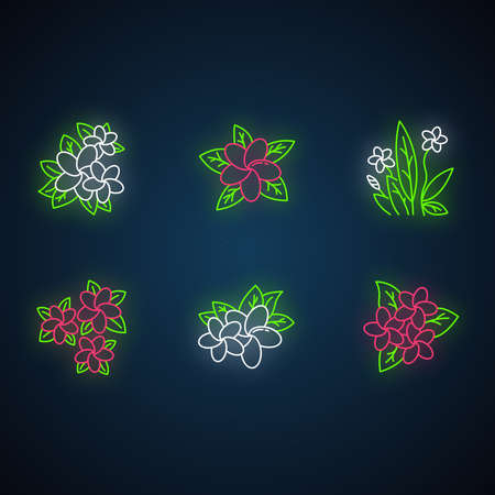 Plumeria neon light icons set. Exotic region flowers. Flora of Indonesian islands. Small tropical plants. Blossom of frangipani. Nature of Bali. Glowing signs. Vector isolated illustrations