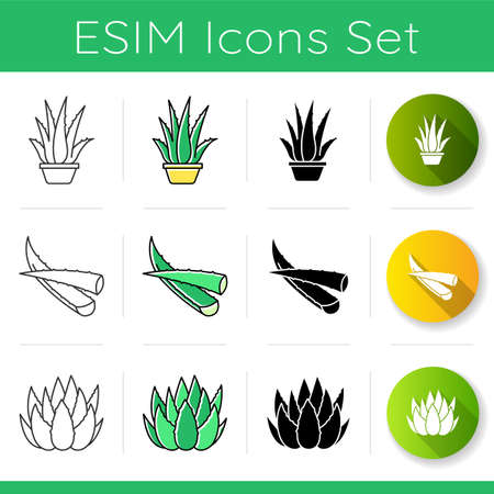Aloe vera icons set. Houseplant in pot. Potted aloe vera. Cactus sprouts and succulent leaves. Plant sprouts. Dermatology. Linear, black and RGB color styles. Isolated vector illustrations