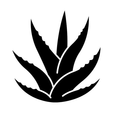 Succulent black glyph icon. Aloe vera sprouts. Cactus leafs. Growing medicinal herb. Decorative plant. Ingredient for organic cosmetic. Silhouette symbol on white space. Vector isolated illustration Ilustrace