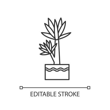 Yucca pixel perfect linear icon. Small exotic indoor palm. Mexican tree with pointed leaves. Thin line customizable illustration. Contour symbol. Vector isolated outline drawing. Editable stroke Illustration