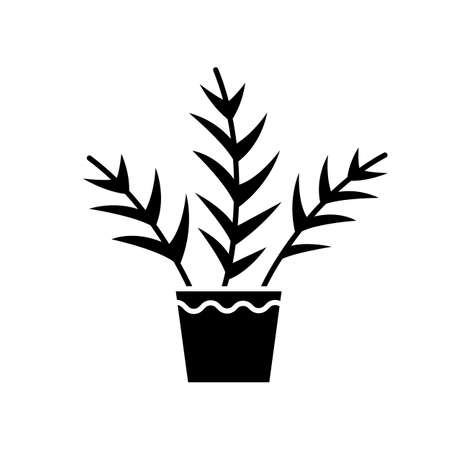 Parlor palm black glyph icon. Chamaedorea elegans. Neanthe bella palm. Majesty palm. Indoor tropical plant. Leafy decorative houseplant. Silhouette symbol on white space. Vector isolated illustration  イラスト・ベクター素材