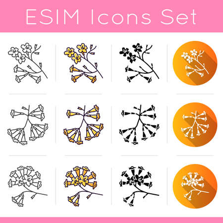 Brazilian flora icons set. Linear, black and RGB color styles. Ipe tree. Plumeria. South american plant. Botany. Tropical blossom. Isolated vector illustrations