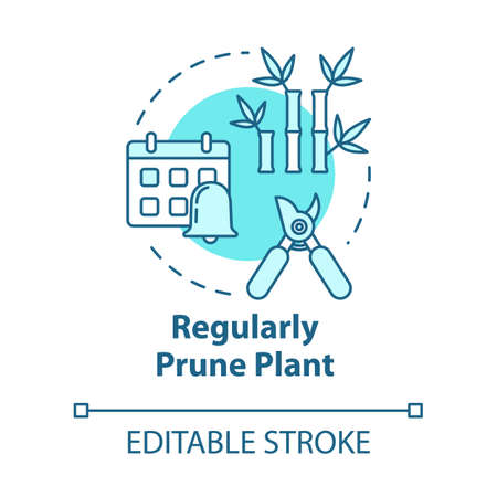 Regular prune plant concept icon. Cutting off dead branches or stems idea thin line illustration. Home potted flower caring. Vector isolated outline RGB color drawing. Editable stroke