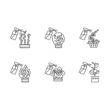 Spraying domesticated plants pixel perfect linear icons set. Houseplant care. Watering plants. Customizable thin line contour symbols. Isolated vector outline illustrations. Editable stroke Illustration