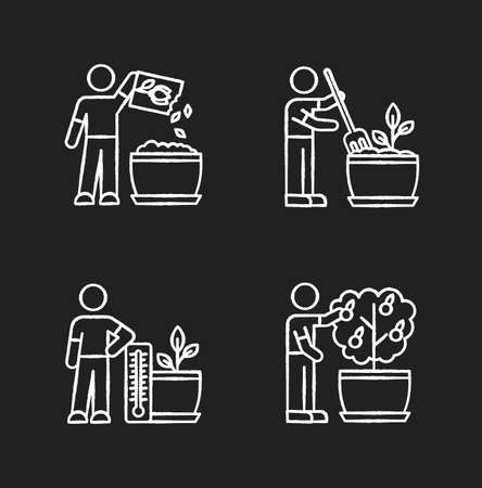 Indoor gardening process chalk white icons set on black background. Planting seed, propagating. Fluffing, plowing soil. Regulating temperature conditions. Isolated vector chalkboard illustrations
