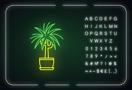 Dracaena neon light icon. Potted ornamental houseplant. Dragon tree. Plant with spiky leaves. Outer glowing effect. Sign with alphabet, numbers and symbols. Vector isolated RGB color illustration Illustration