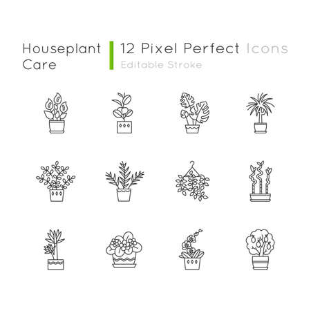 Houseplants pixel perfect linear icons set. Indoor plants. Ficus, violet, bamboo. Lily, pothos. Customizable thin line contour symbols. Isolated vector outline illustrations. Editable stroke Illustration