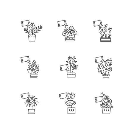 Houseplant fertilizing pixel perfect linear icons set. Feeding domesticated plants. Growth supplements. Customizable thin line contour symbols. Isolated vector outline illustrations. Editable stroke