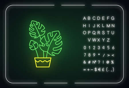 Monstera deliciosa neon light icon. Swiss cheese plant. Philodendron. Indoor tropical plant. Outer glowing effect. Sign with alphabet, numbers and symbols. Vector isolated RGB color illustration