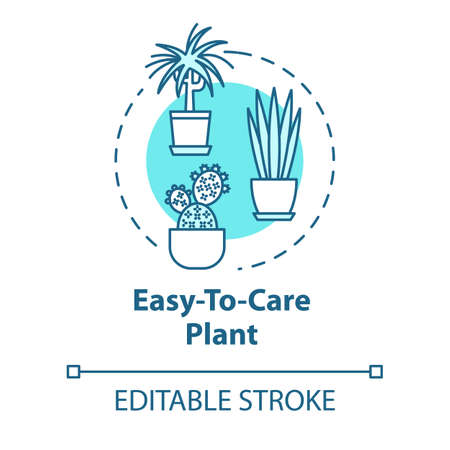 Easy to care plants concept icon. Succulents and cactuses idea thin line illustration. Unpretentious indoor potted flowers. Vector isolated outline RGB color drawing. Editable stroke