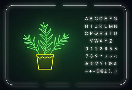 Parlor palm neon light icon. Chamaedorea elegans. Neanthe bella palm. Indoor tropical plant. Outer glowing effect. Sign with alphabet, numbers and symbols. Vector isolated RGB color illustration