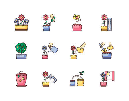 Houseplant care RGB color icons set. Indoor gardening steps. Domestic plant cultivation. Repotting, spraying plants. Planting flower seeds. Watering, fertilizing. Isolated vector illustrations