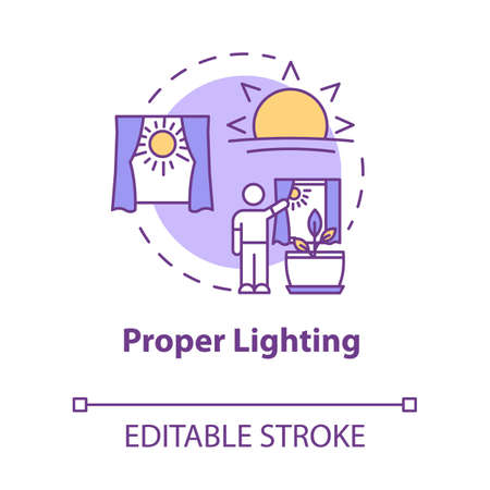 Proper lighting concept icon. Home gardening. Photosynthesis. Herbs cultivating. Adequate sunlight idea thin line illustration. Vector isolated outline RGB color drawing. Editable stroke