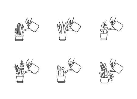 Houseplant care pixel perfect linear icons set. Watering plants. Moisturizing, rehydrating. Moistening. Customizable thin line contour symbols. Isolated vector outline illustrations. Editable stroke Ilustração