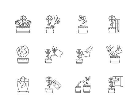Houseplant care pixel perfect linear icons set. Repotting, spraying plants. Watering, fertilizing. Customizable thin line contour symbols. Isolated vector outline illustrations. Editable stroke