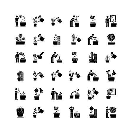 Houseplant care black glyph icons set on white space. Indoor gardening stages. Repotting, replanting. Planting seeds. Watering, soil fluffing. Silhouette symbols. Vector isolated illustration Ilustração