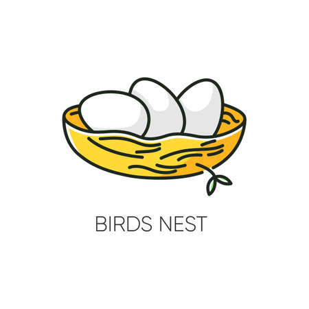 Birds nest RGB color icon. Chick breeding. Skincare product component. Eggs for Easter. Life birth. Ecology and wildlife. Spring sign. Twigs and branches. Isolated vector illustration