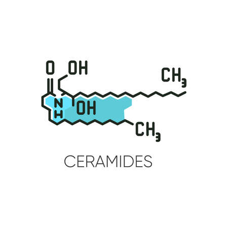Ceramide RGB color icon. Chemical skeletal structure. Scientific formula. Research for dermatology. Lipid molecule. Fatty acid. Korean beauty cosmetic ingredient. Isolated vector illustration 스톡 콘텐츠 - 140755496