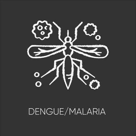 Dengue, malaria chalk white icon on black background. Tropical infectious disease, dangerous mosquito borne illness. African blood sucking insect isolated vector chalkboard illustration