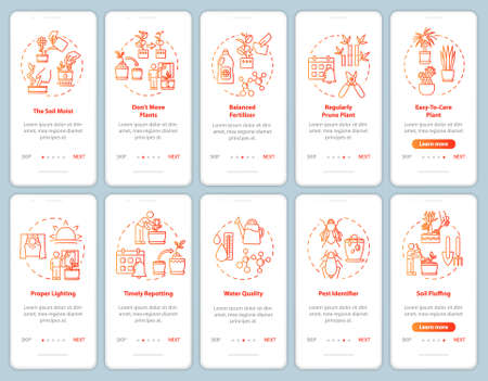 Flowers caring onboarding mobile app page screen with concepts. Greenhouse lighting. Plants growing walkthrough steps graphic instructions. UI vector template with RGB color illustrations Vector Illustratie