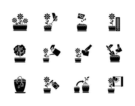 Houseplant care black glyph icons set on white space. Domestic plant cultivation. Repotting, spraying plants. Planting seeds. Watering, fertilizing. Silhouette symbols. Vector isolated illustration