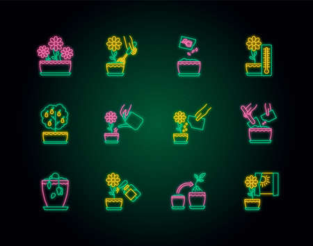 Houseplant care neon light icons set. Plant cultivation. Repotting, spraying. Planting flower seeds. Watering, fertilizing. Signs with outer glowing effect. Vector isolated RGB color illustrations Иллюстрация