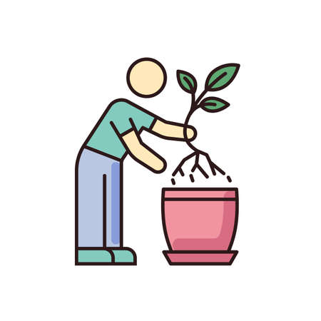 Replanting RGB color icon. Houseplant caring. Transplanting, repotting. Indoor gardening. Plant growing process. Potting plants, changing planter. Planting seedling. Isolated vector illustration