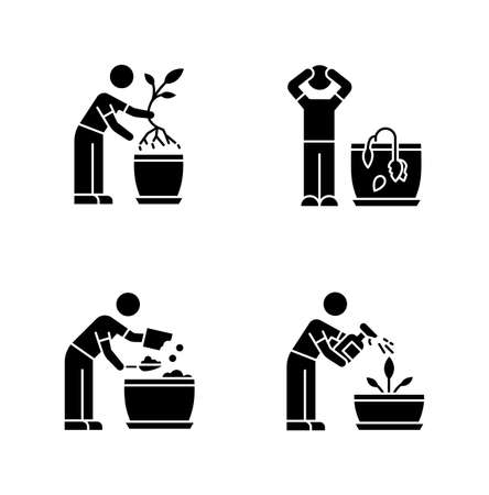 Indoor gardening stages black glyph icons set on white space. Plant cultivation. Replanting, repotting. Wilting flower. Preparing soil for planting. Silhouette symbols. Vector isolated illustration