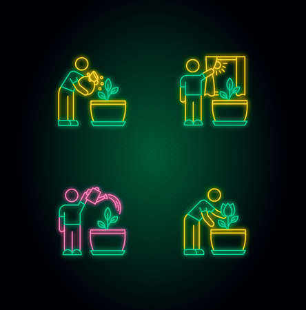 Indoor gardening stages neon light icons set. Plant cultivation. Fertilizing, watering flowers. Exposing plants to sunlight. Signs with outer glowing effect. Vector isolated RGB color illustrations Illustration