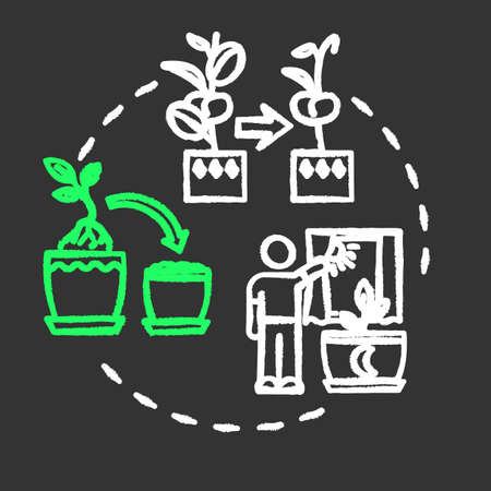 Dont move plants chalk RGB color concept icon. Houseplants caring. Floriculture tip. Flowers acclimatization idea. Vector isolated chalkboard illustration on black background