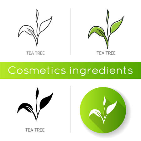 Tea tree icon. Skincare product component. Organic beauty. Herbal moisture. Essential oil. Natural cosmetic ingredient. Linear black and RGB color styles. Isolated vector illustrations