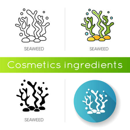 Seaweed icon. Natural component. Skincare treatment product. Antiaging effect. Marine grass extract. Cosmetic ingredient. Linear black and RGB color styles. Isolated vector illustrations