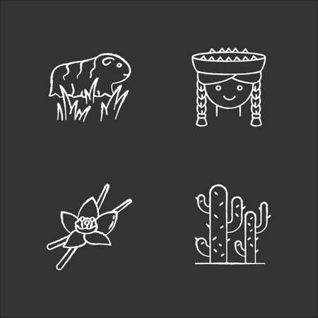 Peru chalk white icons set on black background. Incas country features. Guinea pig, peruvian girl, vanilla, cactuses. Traveling in South America. Isolated vector chalkboard illustrations