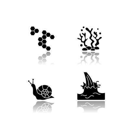 Cosmetic ingredient drop shadow black glyph icons set. Propolis, honey comb. Seaweed underwater. Snail mucin. Milk extract. Cosmetology, dermatology. Isolated vector illustrations on white space