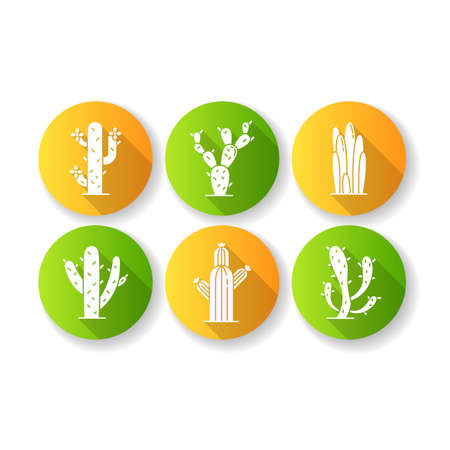 Cactuses flat design long shadow glyph icons set. American desert plants with fleshy trunks. Family Cactaceae. Prickly succulents. Arid area thorny wildflowers. Silhouette RGB color illustration