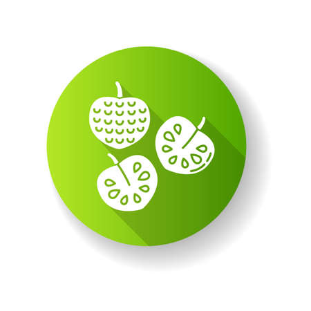 Cherimoya green flat design long shadow glyph icon. Custard apple. Annona cherimola. Sweet ripe tropical fruit. Healthy vegan diet. Exotic organic product. Silhouette RGB color illustration