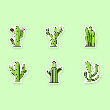 Cactuses printable patches. American desert plants with fleshy trunks. RGB color stickers, pins, badges set. Different prickly succulents. Arid area thorny wildflowers. Vector isolated illustrations