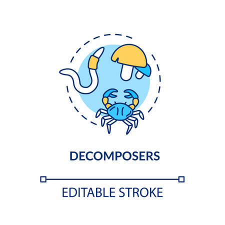Decomposers concept icon. Food chain final link, reducers. Biological process in nature idea thin line illustration. Vector isolated outline RGB color drawing. Editable stroke Illustration