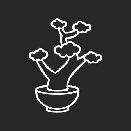 Bonsai chalk white icon on black background. Tiny cultivated potted tree. Decorative gardening. Flowerpot with dwarf plant with foliage on branches. Isolated vector chalkboard illustration