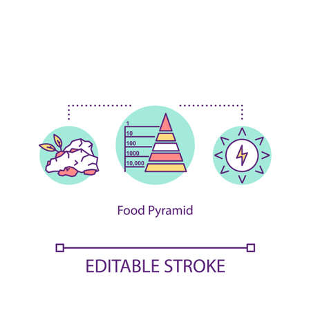 Food pyramid concept icon. Dietary nutrition. Meal groups. Healthy eating recommendation idea thin line illustration. Vector isolated outline RGB color drawing. Editable stroke