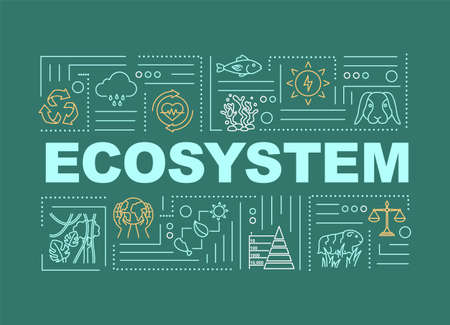 Ecosystem, biodiversity word concepts banner. Nature, living organisms community. Infographics with linear icons on green background. Isolated typography. Vector outline RGB color illustration Ilustração