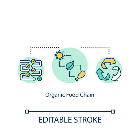 Organic food chain concept icon. Natural produce and meat growing. Eco friendly farming idea thin line illustration. Vector isolated outline RGB color drawing. Editable stroke