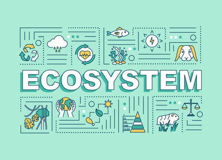 Ecosystem word concepts banner. Biodiversity, living organisms community. Infographics with linear icons on turquoise background. Isolated typography. Vector outline RGB color illustration