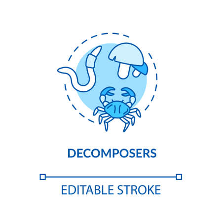 Decomposers blue concept icon. Food chain final link, reducers. Biological process in nature idea thin line illustration. Vector isolated outline RGB color drawing. Editable stroke Illustration